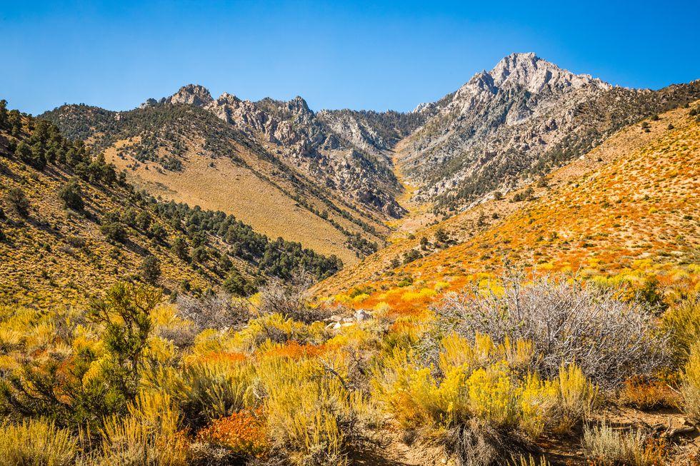 Valle de cebolla, california, subida