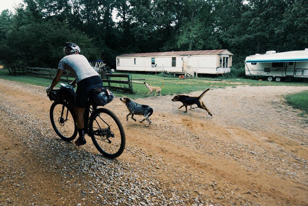 Aprende a defenderte de un perro siendo ciclista
