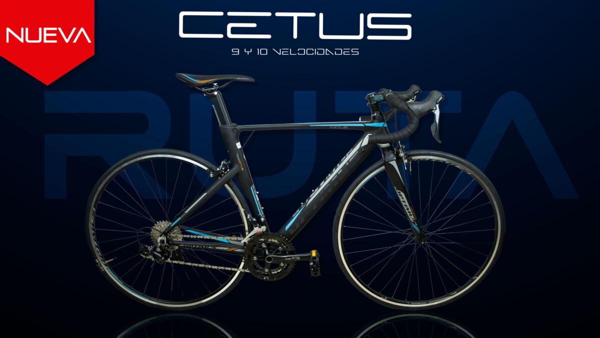 Optimus Cetus