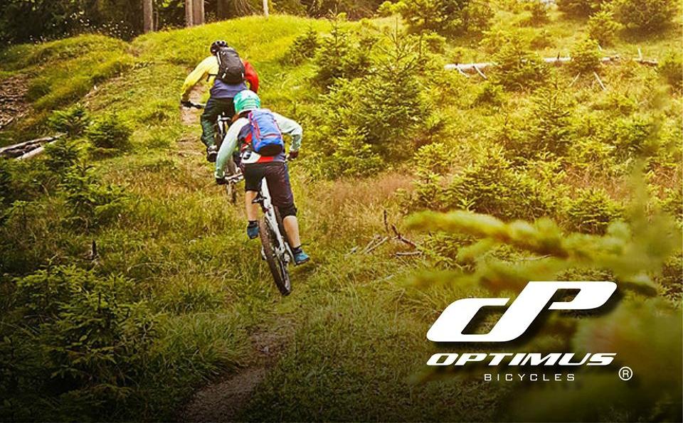 Aprende a elegir las mejores llantas de ciclismo