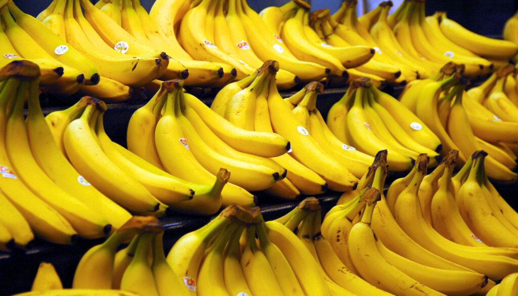 Cinco beneficios de consumir banano durante tus salidas en bicicleta